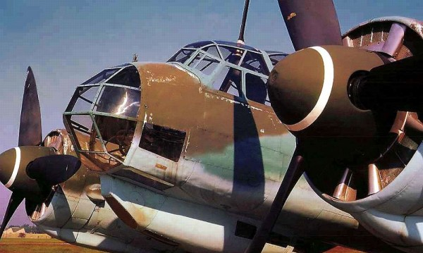 Profile Luftwaffe Ju-88